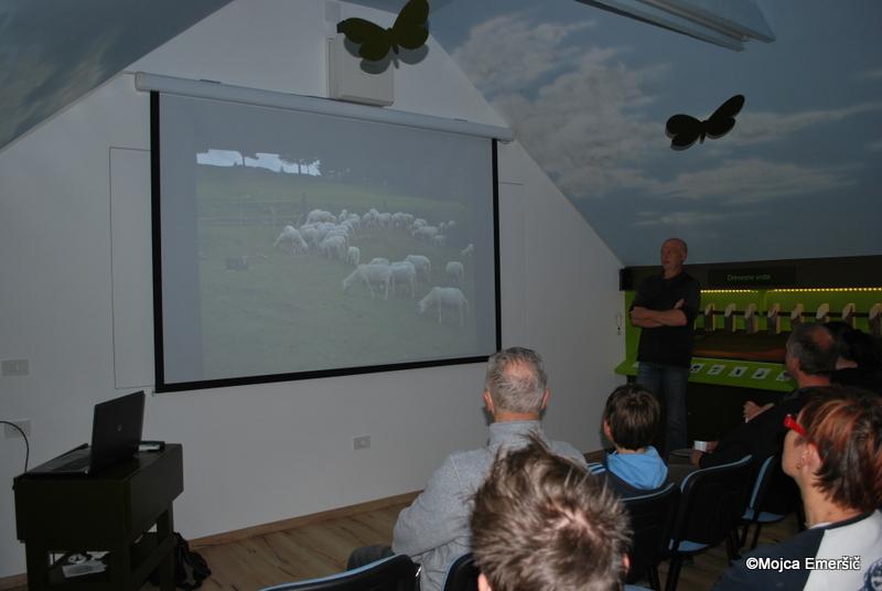 Mojca Emeršič in Robert Žgavec sta predstavila zgodovino kraševca in projekt uvajanja kraševca v funkcijo pastirskega psa.