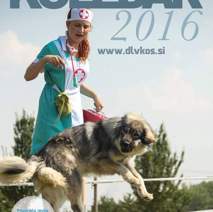 KOLEDAR KRAŠEVEC 2016
