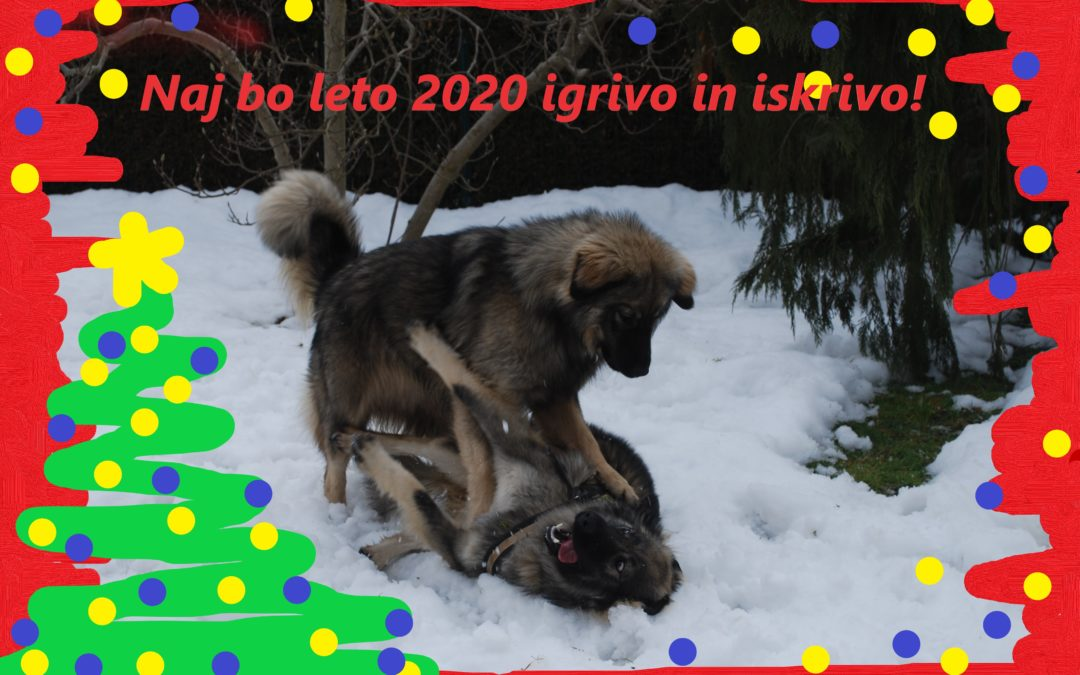 Srečno in uspešno 2020 !!!