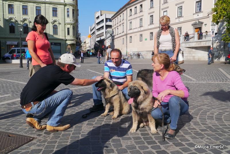 Vtisi z oktobrskega srečanja kraševcev v Ljubljani